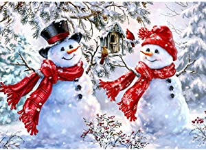 DIY 5D Diamond Painting by Number Kits, Crystal Rhinestone Diamond Embroidery Paintings Pictures Arts Craft for Home Wall Decor (Snowman)