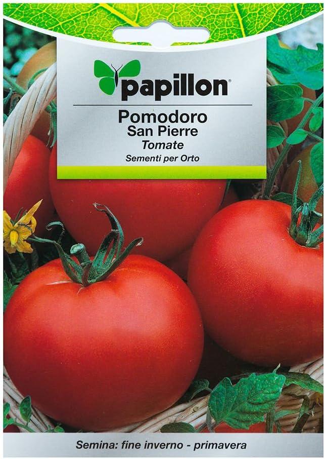 Semillas Tomate Redondo Liso (1 Gramo): Amazon.es: Bricolaje y ...