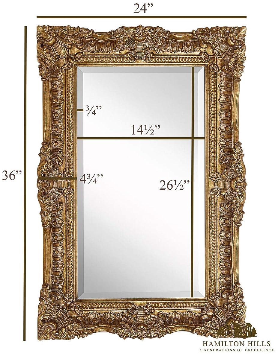 "Hamilton Hills Large Ornate Gold Baroque Frame Mirror | Aged Luxury | Elegant Rectangle Wall Piece | Vanity, Bedroom, or Bathroom | Hangs Horizontal or Vertical | 100% (24"" x 36"")"