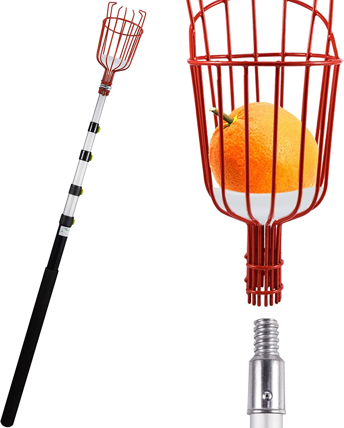 Lopunny Fruit Picker 13-foot Lightweight Telescoping Aluminum Pole with Bruise Free Basket for Apple Pear Peach harvesting