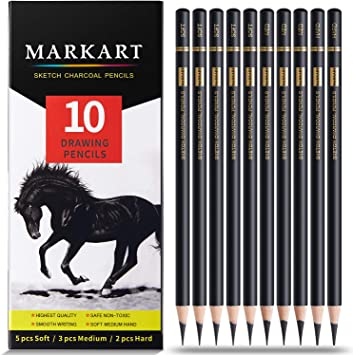 6 Pieces Soft Medium and Hard Charcoal Pencils for Sketching Shading Beginners,1 Sharpener and 1 Blending Stump Include Artist Charcoal Pencils Drawing Set