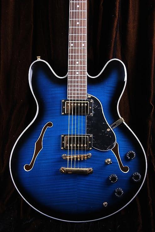 Oscar Schmidt OE30 Delta Blues Semi hueca Guitarra Eléctrica, Blueburst, oe30fblb