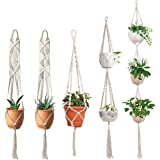 ecofynd® Macrame Cotton Plant Hanger [Without Pot], Set of 5   Rope Flower Pot Holder for Indoor Outdoor Balcony Garden   Home Decor, Pack of 5