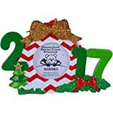 Personalized 2017 Photo Frame