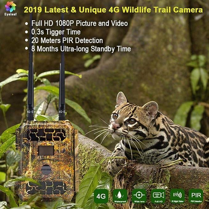 Eyeleaf SW4.3G - Cámara Digital de 16 Mpx y 4 G con visión Nocturna para Caza de Cerebros, Seguridad e Impermeable: Amazon.es: Electrónica