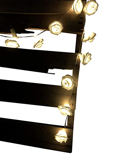 Amazon.com DREAM TADA Princess Canopy | Mosquito Bed Girls Canopy | Enchanted Lighted Canopy Curtain (LED String Lights- White Rose Warm White LED) Toys ...  sc 1 st  Amazon.com & Amazon.com: DREAM TADA Princess Canopy | Mosquito Bed Girls Canopy ...
