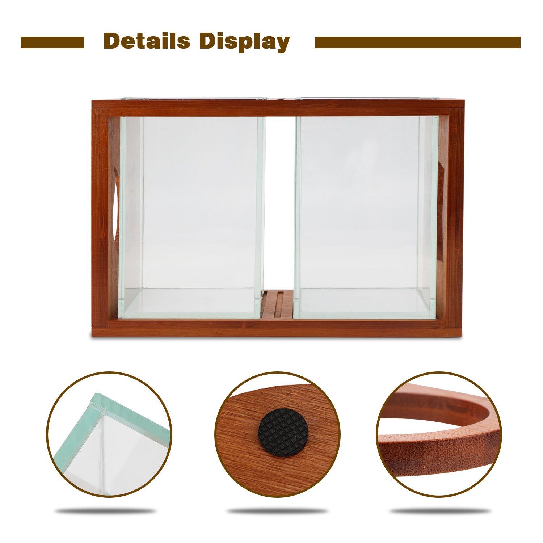 Segarty Cool Design Desktop Glass Fish Tank - Small Fish Bowls with ...
