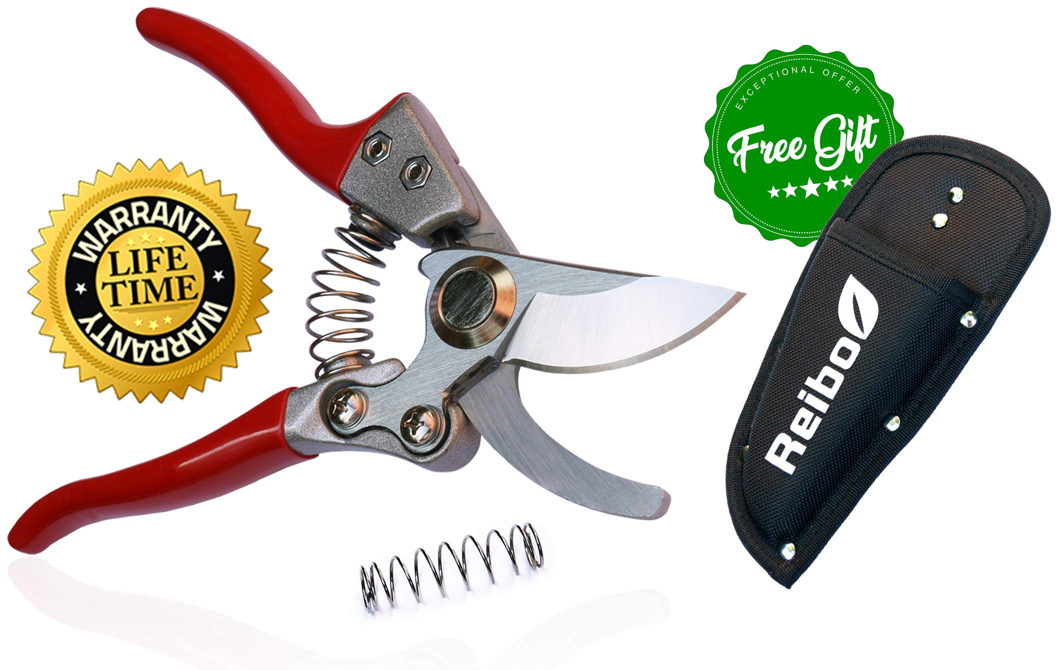 8'' Professional Garden Bypass Pruning Shears with Free Holster, Premium Razor Sharp SK5 Stainless Steel Blades, Heavy Duty Hand Pruners, Pruning Scissors, Garden Clippers by Reibo by Reibo