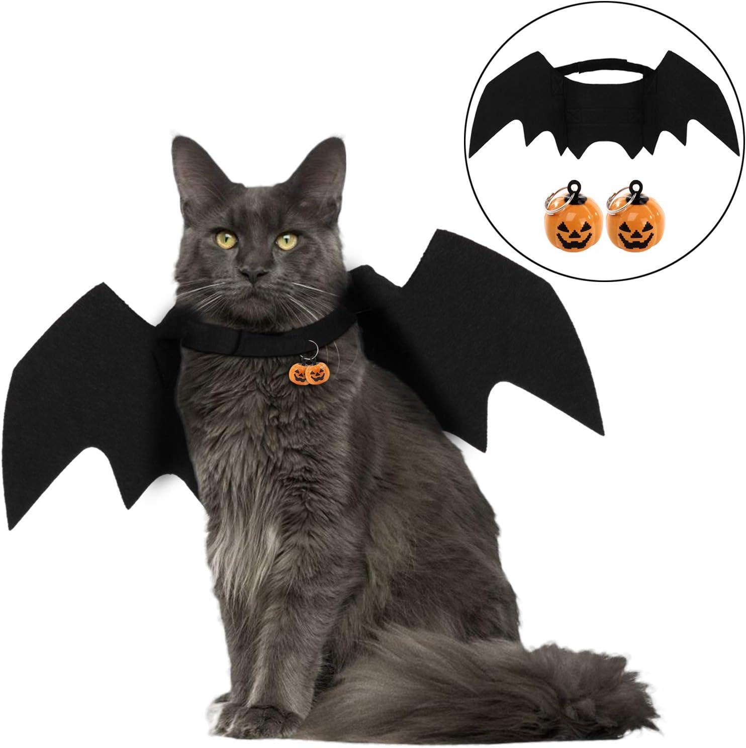 A cat wearing a bat costume