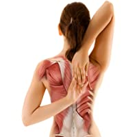 Prevent Back Pain: Exercises For A Correct Posture And A Strong Upper Back and Neck