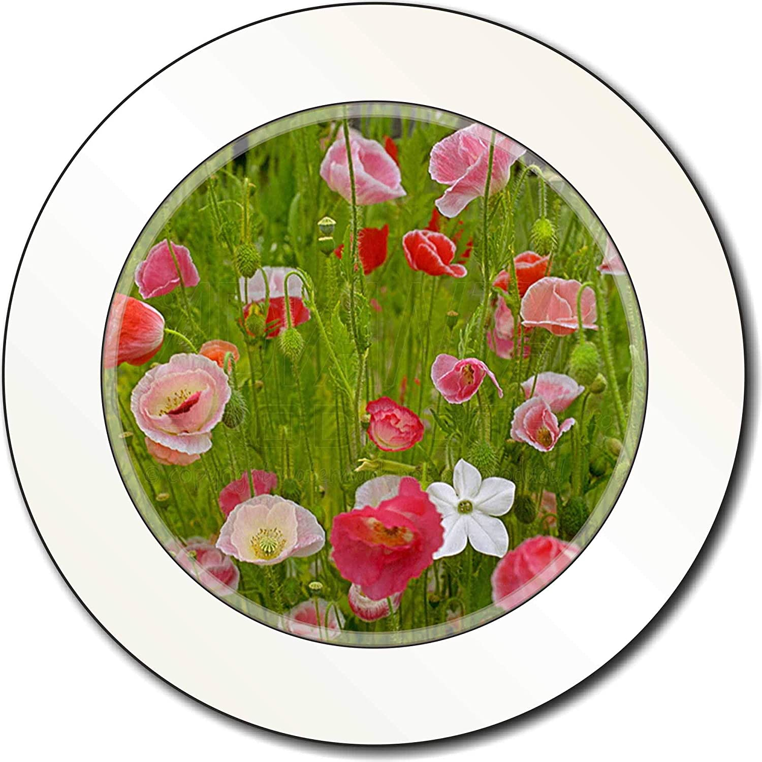 Advanta Group Poppies in Poppy Field Car//Van Permit Holder//Tax Disc Gift