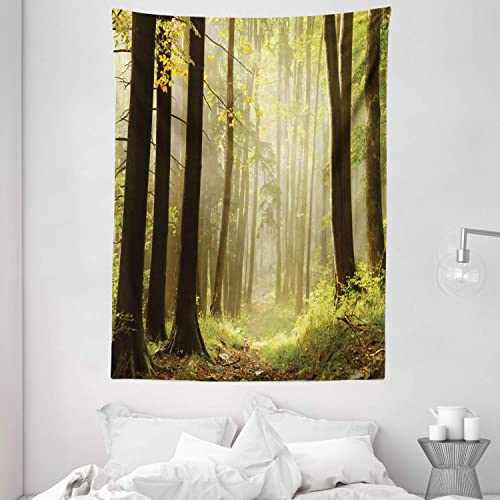 Ambesonne Nature Tapestry, Misty Autumnal Woods Natural Pathway Serene Morning Sunrise Picture, Wall Hanging for Bedroom Living Room Dorm, 60 X 80 , Green Yellow