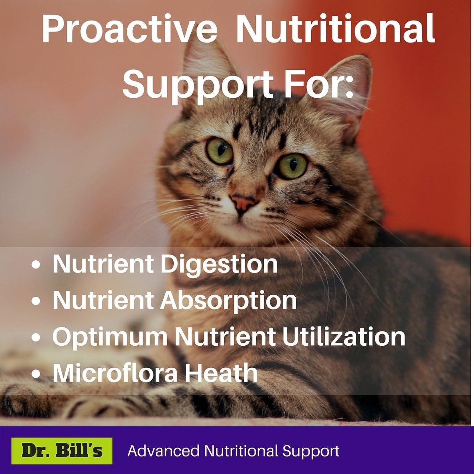 Dr. Bill's Feline Digestive Support| Pet - 1