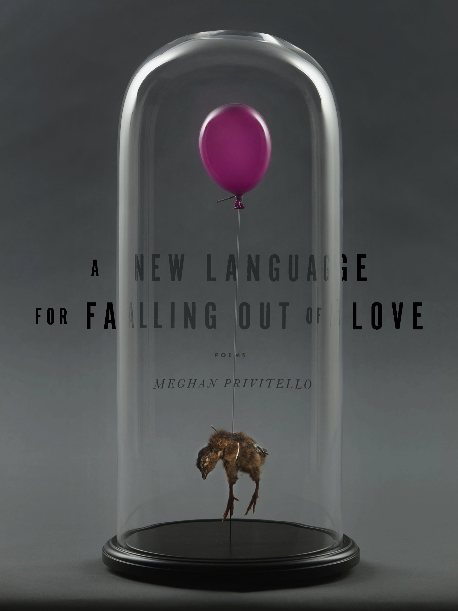 A New Language for Falling Out of Love