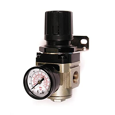 Primefit R3802G Intermediate Air Regulator with Steel-Protected Gauge at 100-PSI, 3/8-Inch NPT: Home Improvement