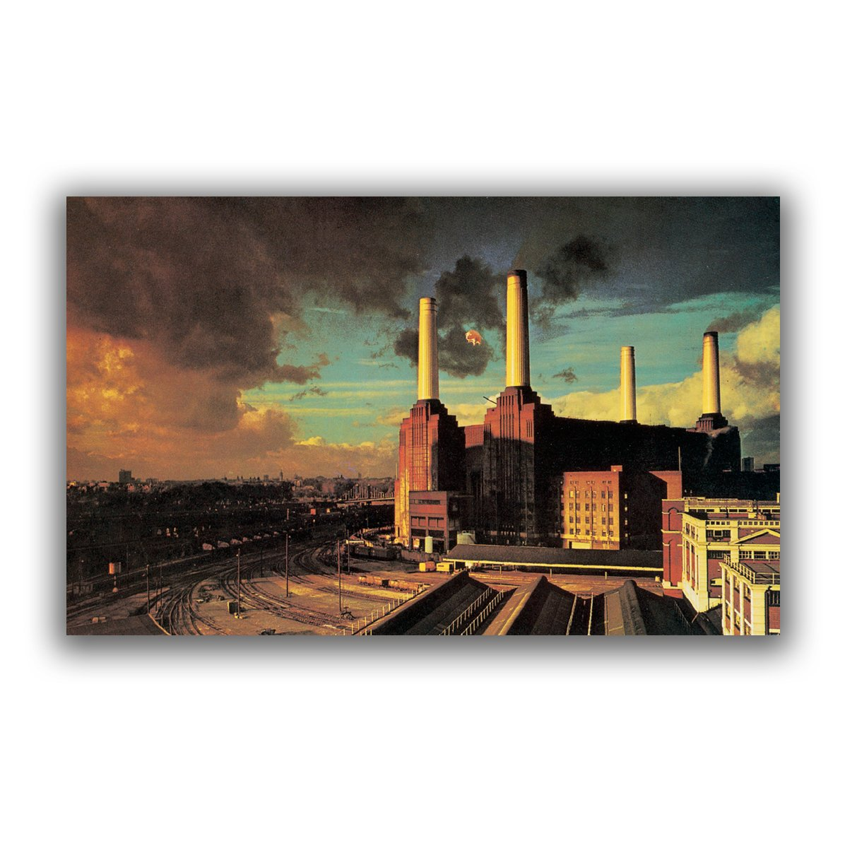Get Down Art Animals Fly Canvas Artwork, 24 x 36 Inches (PFPOE2-24x36)