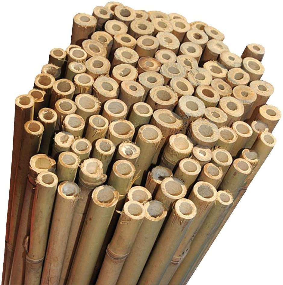 x 100 Elixir Extra Strong Bamboo Plant Support Garden Canes 7ft 14-16mm diameter