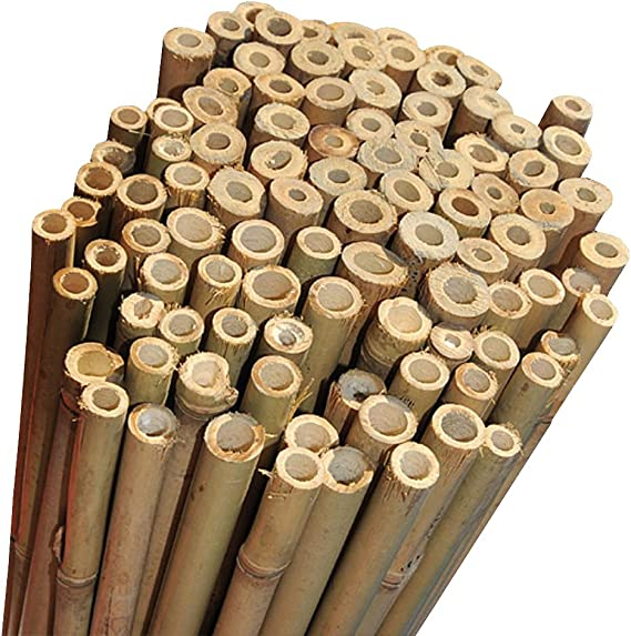 5ft U Shaped Bamboo Canes Garden Plant Supports x 10
