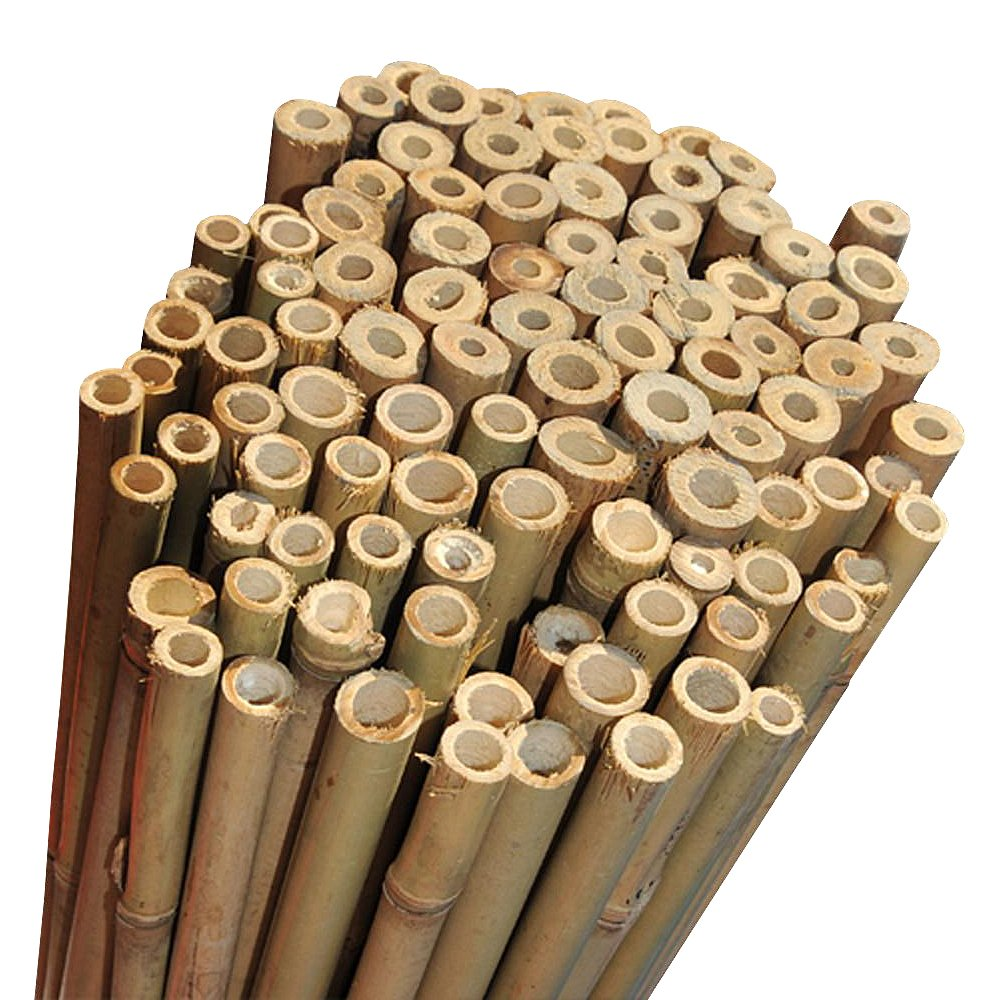 Extra Strong Bamboo Plant Support Garden Canes 3ft (10-12mm diameter) x 10 by Elixir Gardens ®