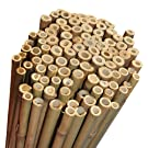 Elixir Gardens 5ft Extra Strong Heavy Duty Professional Bamboo Plant Support Garden Canes x 30