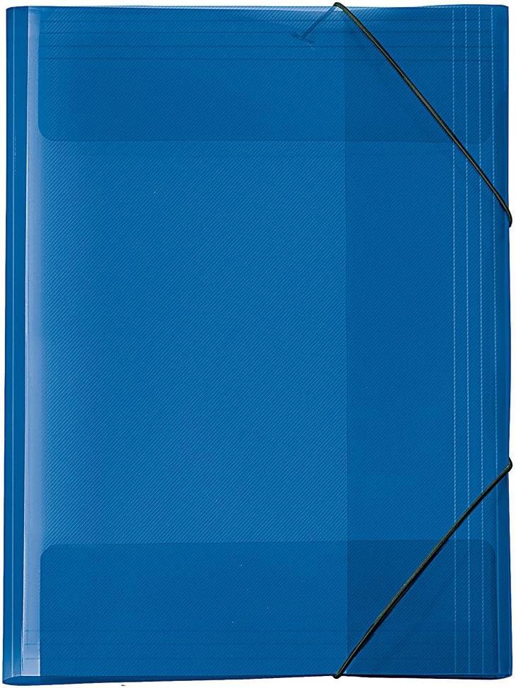 Carpeta archivadora A3, color azul transparente: Amazon.es ...