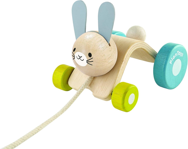 Rabbit Push toy