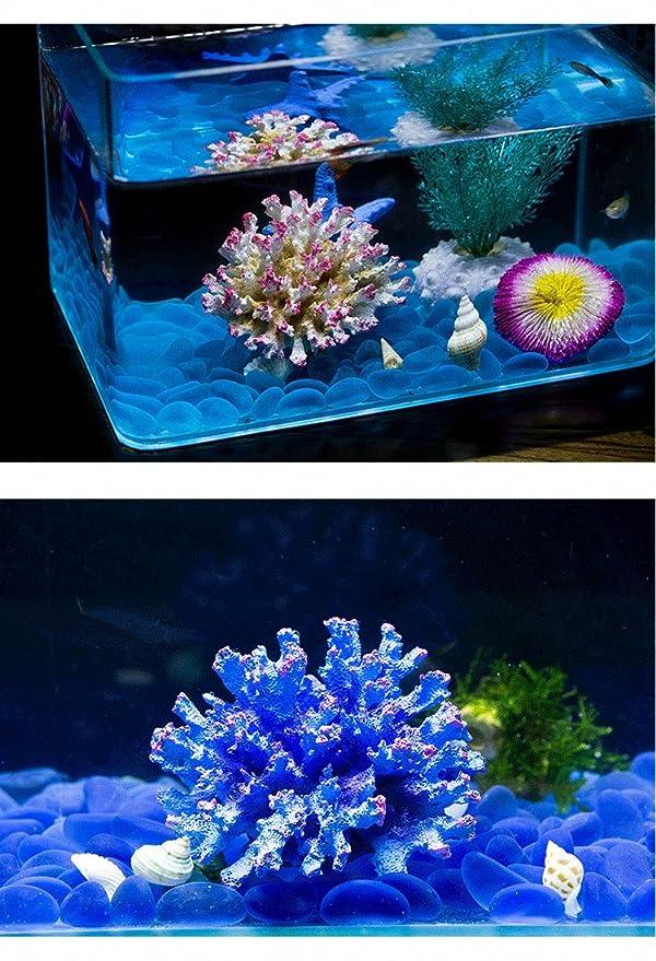 Amazon.com : Artificial Sea Anemone Coral Plant for Aquarium Decoration Aquatic Arts Safe Resin Fish Tank Ornament : Pet Supplies