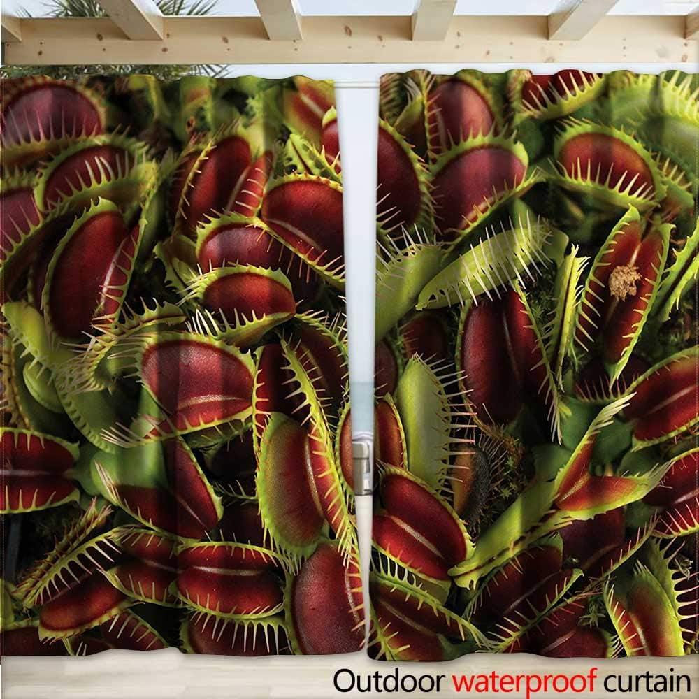 warmfamily - Cortinas (108 x 96 cm), diseño con Texto en inglés ...