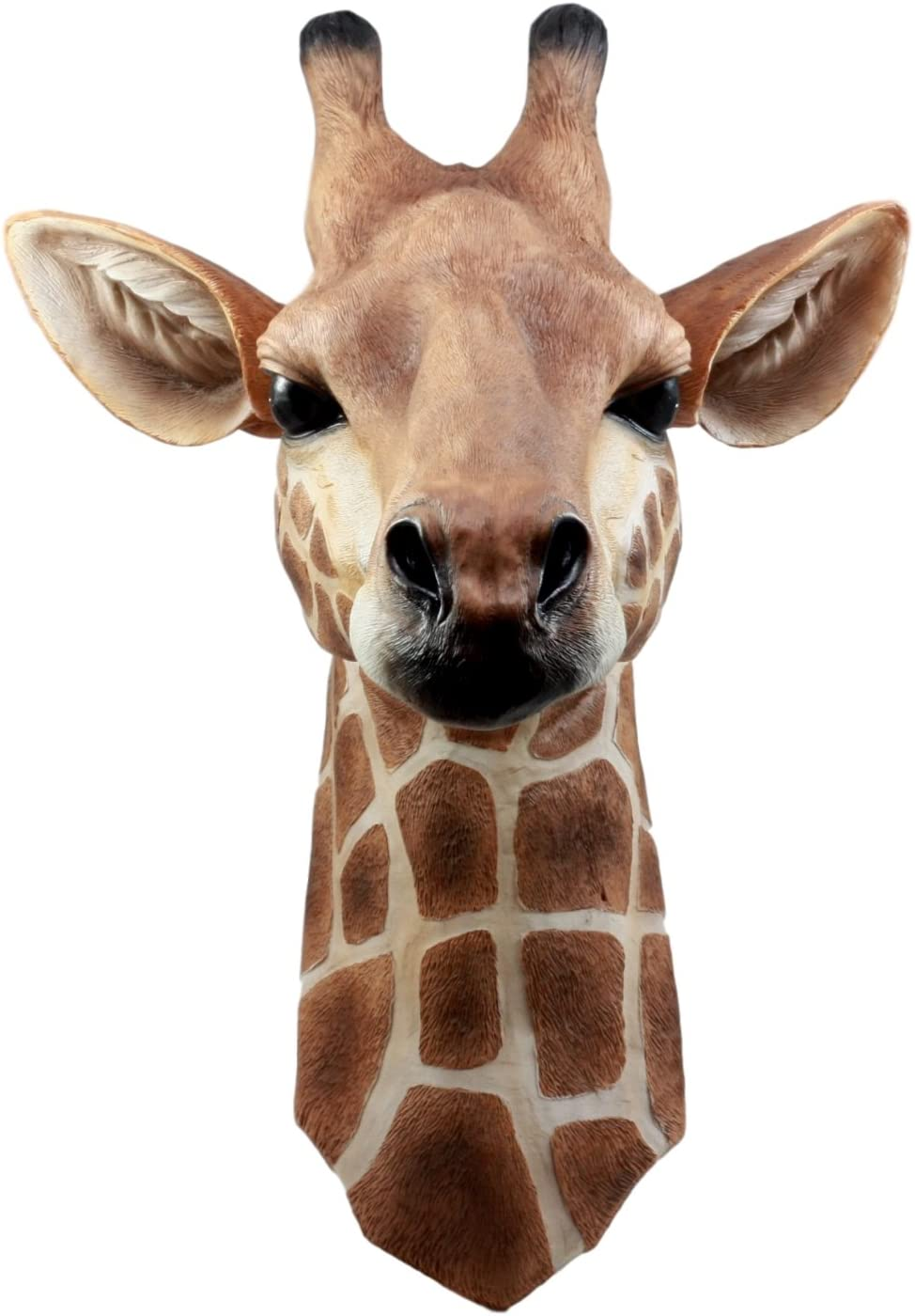 Ebros Safari Giraffe Head Trophy Taxidermy Wall Decor Wildlife Animal Sculpture Hanging Plaque Figurine