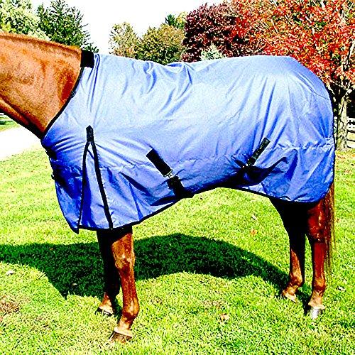 Intrepid International Free Runner Mid Weight Turnout Blanket, 80-Inch, Royal Blue (Medium Weight Turnout)