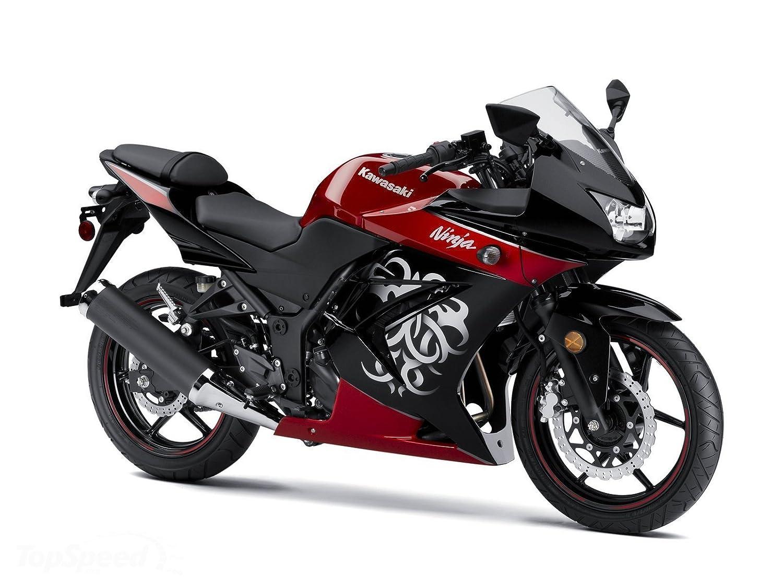 2008 - 2012 Kawasaki Ninja 250 EX250 señal de giro delantero ...
