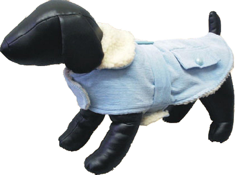 Light bluee Corduroy 12-Inch Light bluee Corduroy 12-Inch Amazing Pet Products Dog Coat, 12-Inch, Light bluee Corduroy