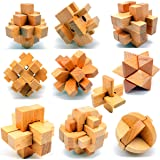 Guaishou 10-in-One 3D Wooden Puzzles Kongming Lock IQ Test Toy for Teens and Adults