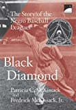 Black Diamond: The Story of the Negro Baseball Leagues (Polaris)
