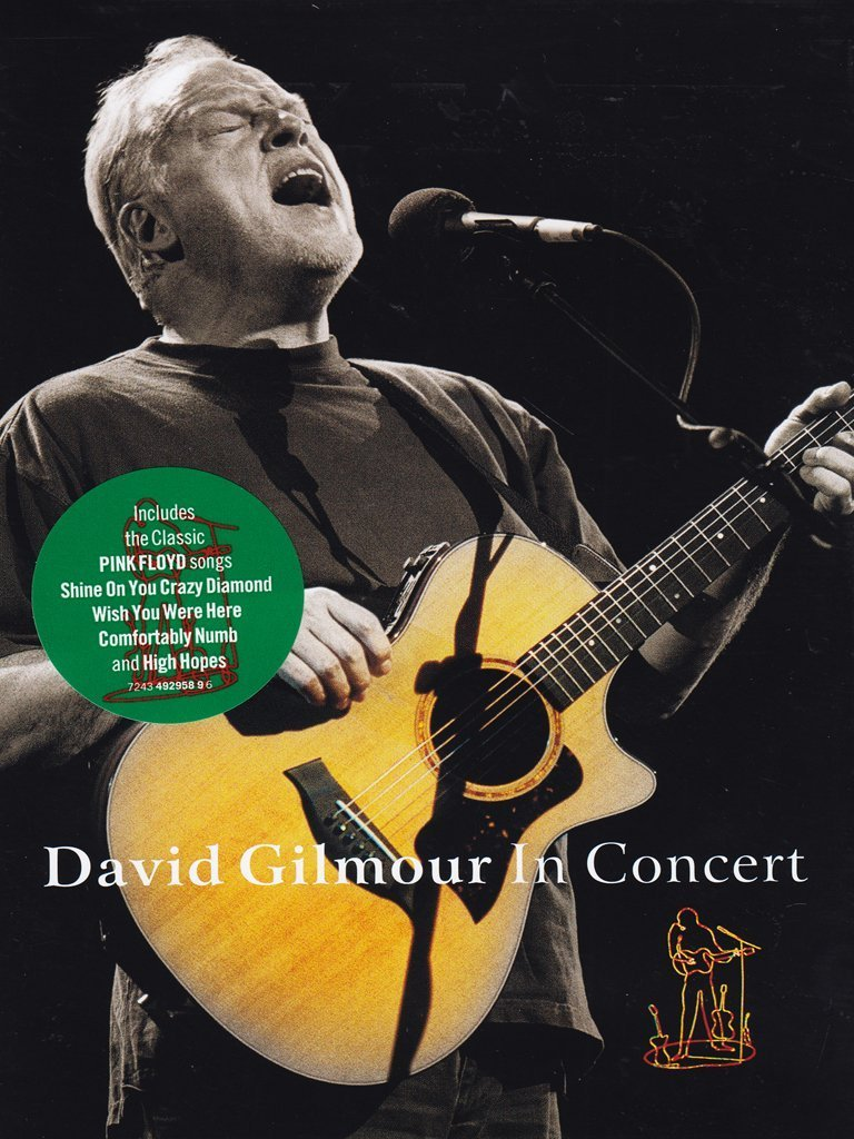 David Gilmour In Concert [DVD]