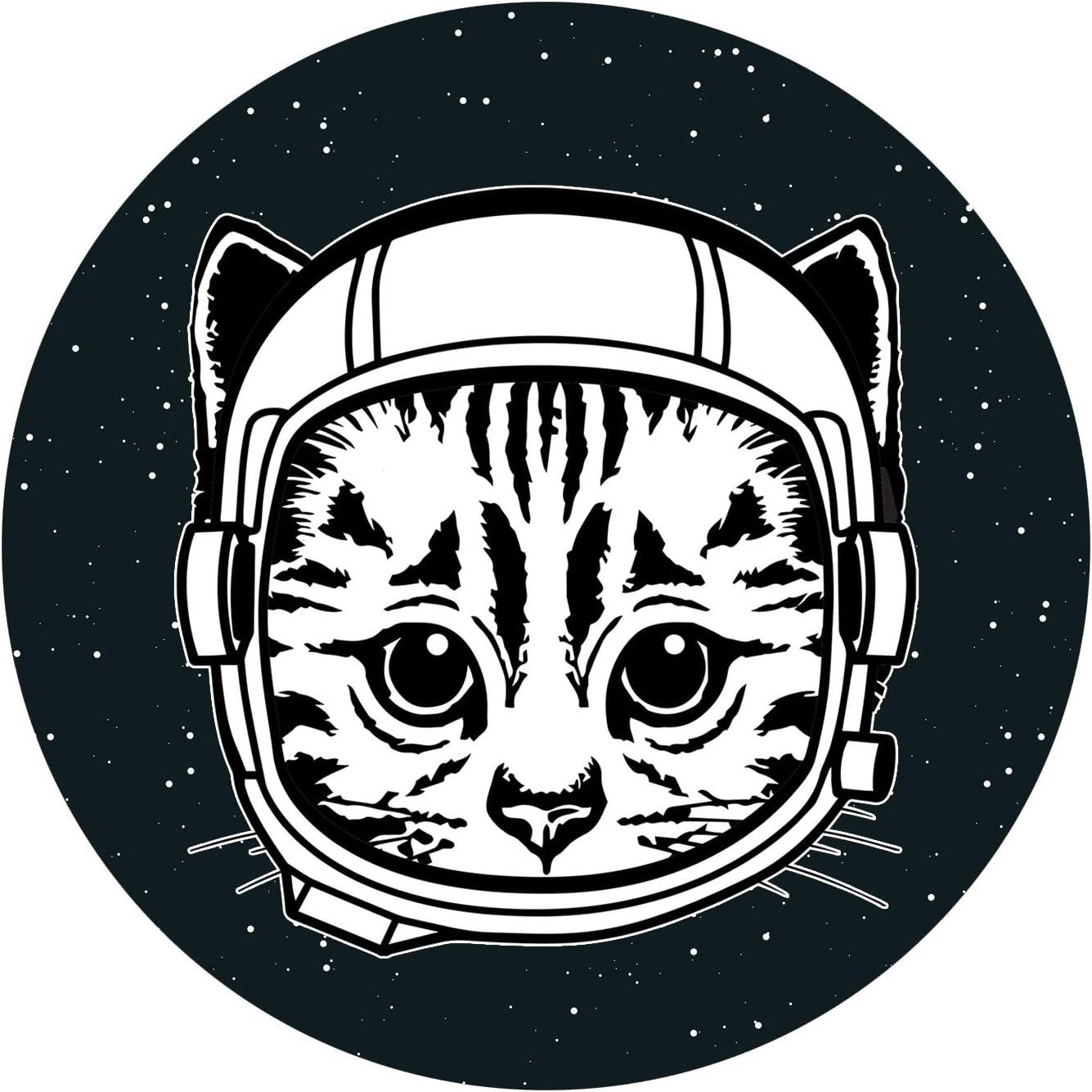 EvolveFISH Space Cat Bumper Sticker 5 Diameter