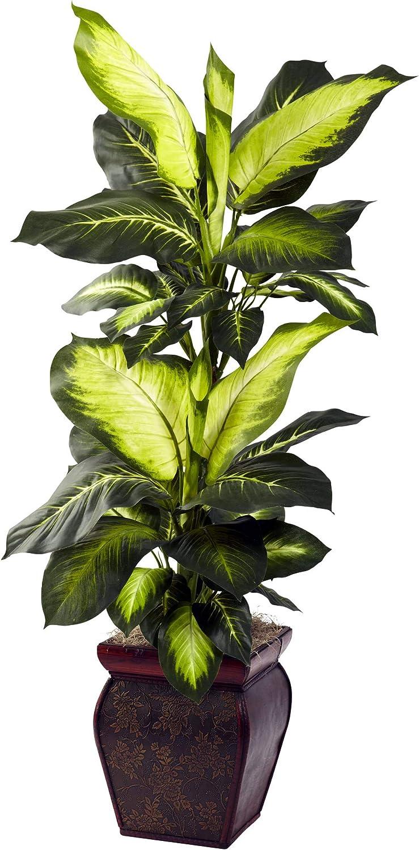 FloralStem Plante Dieffenbachia artificielle 80/cm en pot Bush Feuilles Home /& Office D/écor