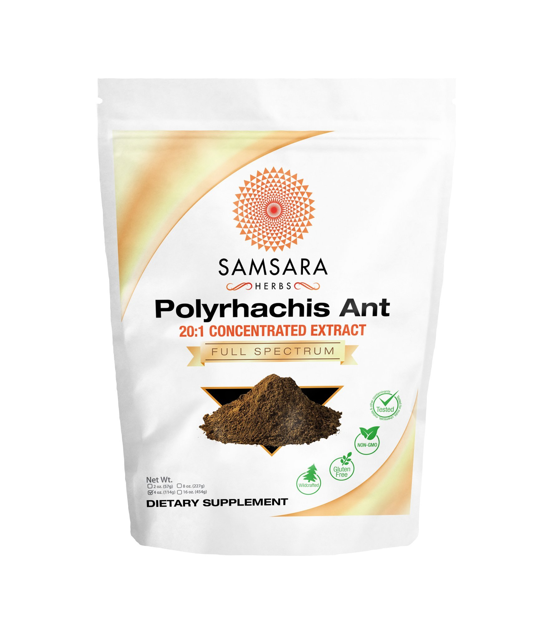 Samsara Herbs Polyrhachis Ant Extract Powder - 20:1 Concentrated Extract (4oz)