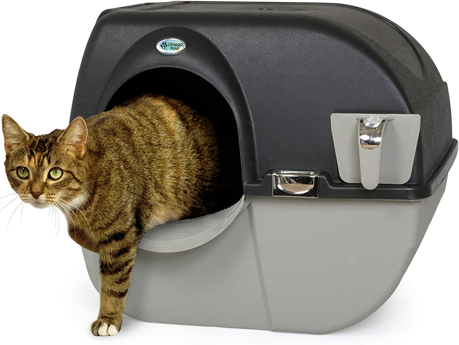 Top 10 Best Automatic Litter Box For Large Cats [Updated November 2020] 5