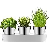 WMF Gurme Ot Bahçe Seti, 3 Adet, Sulama Sistemi İle Ot Pot, Paslanmaz Çelik Cromargan, Plastik, Fesleğen, Maydanoz, Nane…