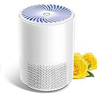 Nuaer Luchtreiniger voor thuis met echte HEPA-filters, draagbaar, geluidsarme luchtreiniger, USB-luchtreiniger voor…