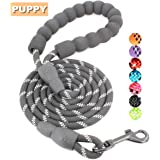 BAAPET 5 FT Strong Dog Leash with Comfortable Padded Handle and Highly Reflective Threads Dog Leashes for Small and Medium Dogs