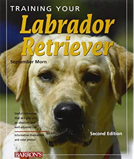 Training pdf labrador
