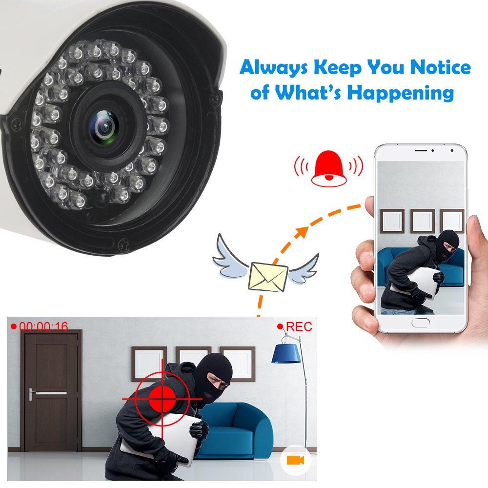 didseth CCTV Cámara Sistema H.264 con 4 CH 1080 N 5 en 1 DVR de vigilancia Sistema de seguridad y 4 x 1080P HD Bullet cámaras, IR Visión Nocturna, ...