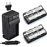 Newmowa NP-F550 Battery (2-Pack) and Charger kit for Sony NP-F330,F550,F570 and Sony CCD-SC55,TR516,TR716,TR818,TR910,TR917 Camera