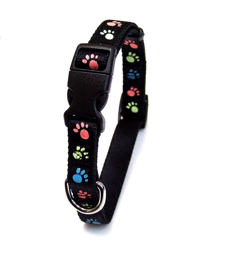 はさみ億イノセンスMASBRILL LED光る首輪、防水USB 再充電  猫用 犬用 蛍光·安全首輪、ペット 夜間 安全性、犬の安全対策。強力なLEDライト 1000m先から目視可能。3種類のライトモードを搭載、小型犬や中型犬や大型犬に適しています。
