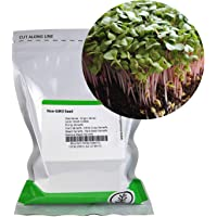Radish Sprouting Seed - Red Arrow Variety - 4 oz Seed Pouch - Heirloom Radish Sprouts - Non-GMO Sprouting Micro Greens