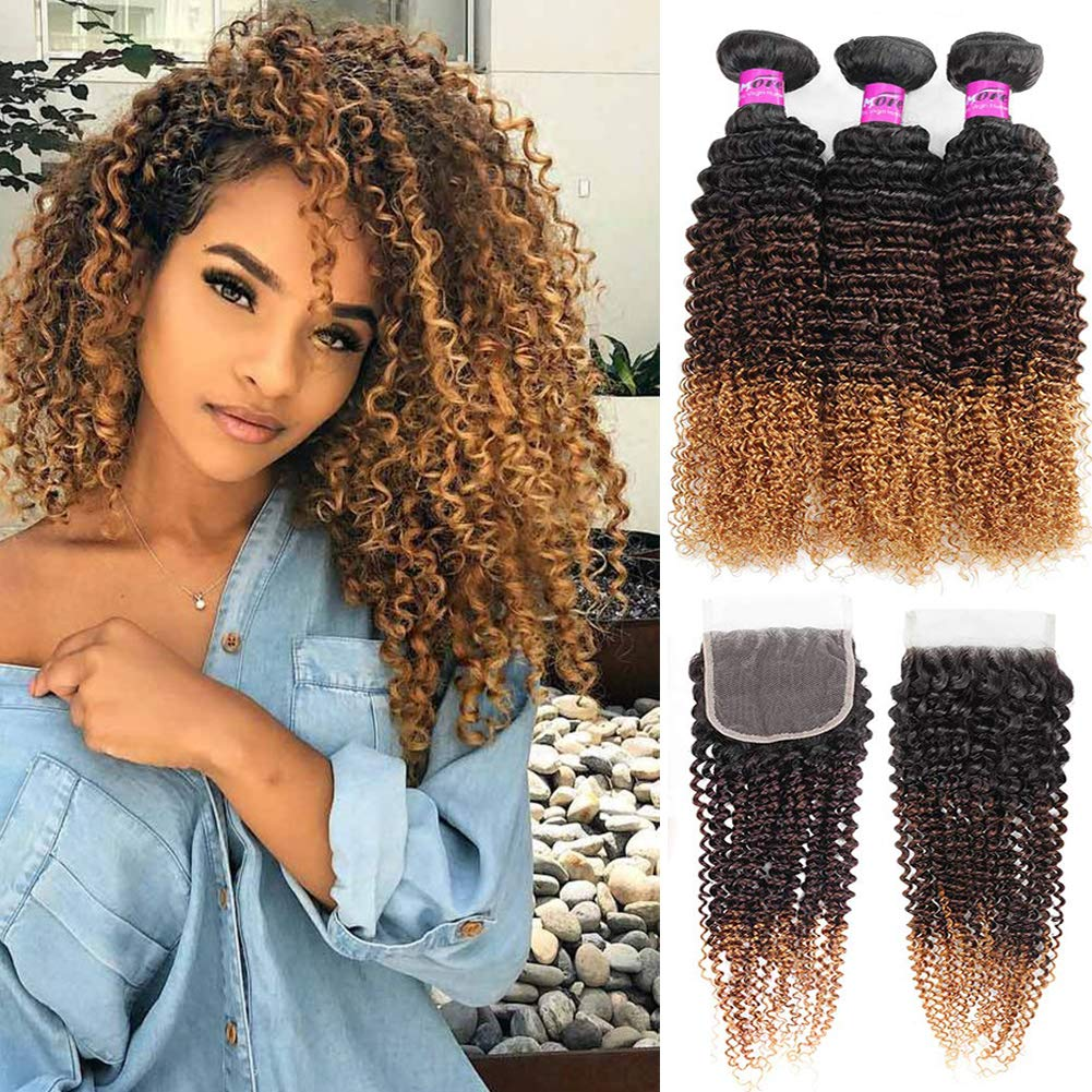 Mink Hair Ombre Kinky Curly Hair with Closure (10 12 14 + 10) Grade 8A Brazilian Virgin Curly Hair Extensions with 4x4 Free Part Lace Closure 1B/4/27# Color