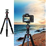 "3WE Lightweight Aluminum Tripod, 65"" Rotatable Center Column,360 Degree Ball Head, DSLR Tripod for Camera Video Camcorder for Travel Work"
