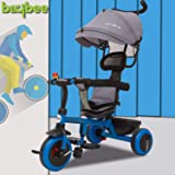 Baybee Rito 4 in 1 Convertible Baby Tricycle Kid's Trike Ride on with Parental Adjust Push Handle Children Tricycle with Canopy Bicycle Children Tricycle Suitable for Boys & Girls Age 1-5 Years